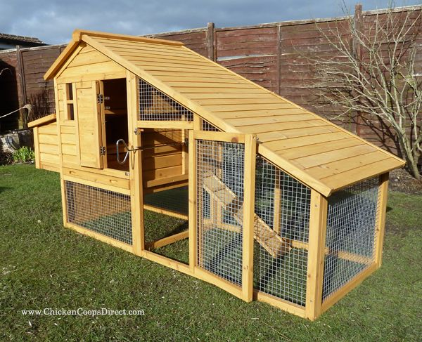 cosy designs for chicken houses. Sussex Chicken House by Coops Direct 8 best The Coop images on Pinterest  Poultry house