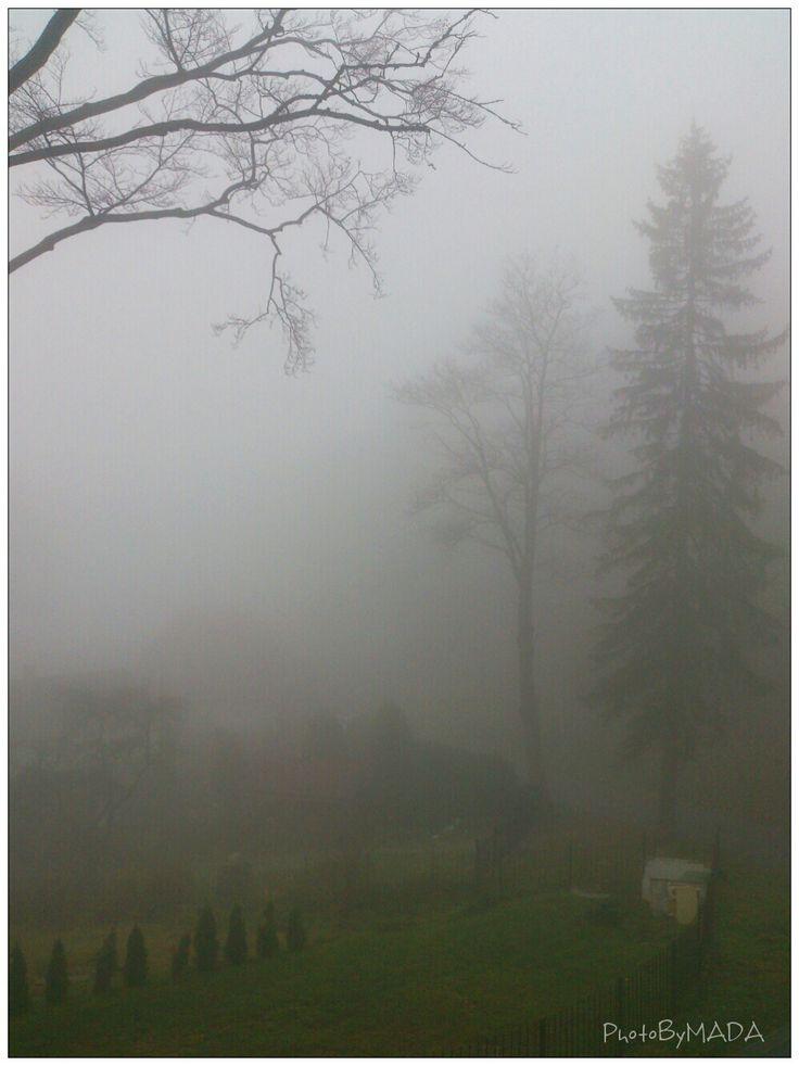 november 11.2014 12.46 XperiaT - phoneography PhotoByMADA- Magdalena.Sienkiewicz Photography