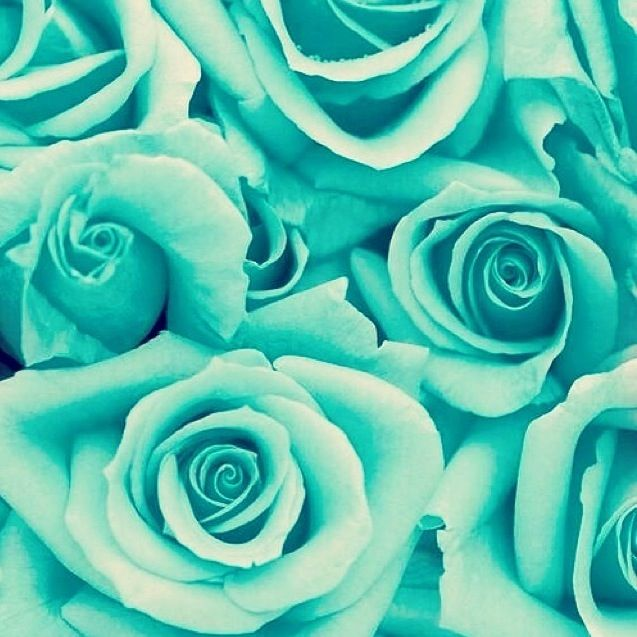 Teal Aesthetic Pastel Wallpaper