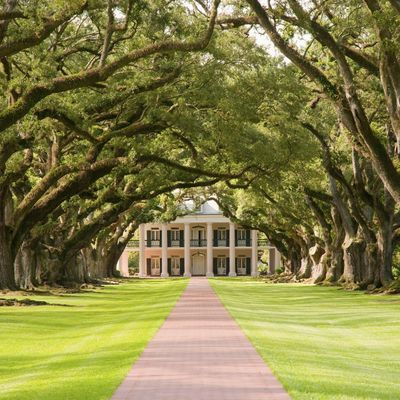 17 best images about southern comfort on pinterest for 1800s plantation homes