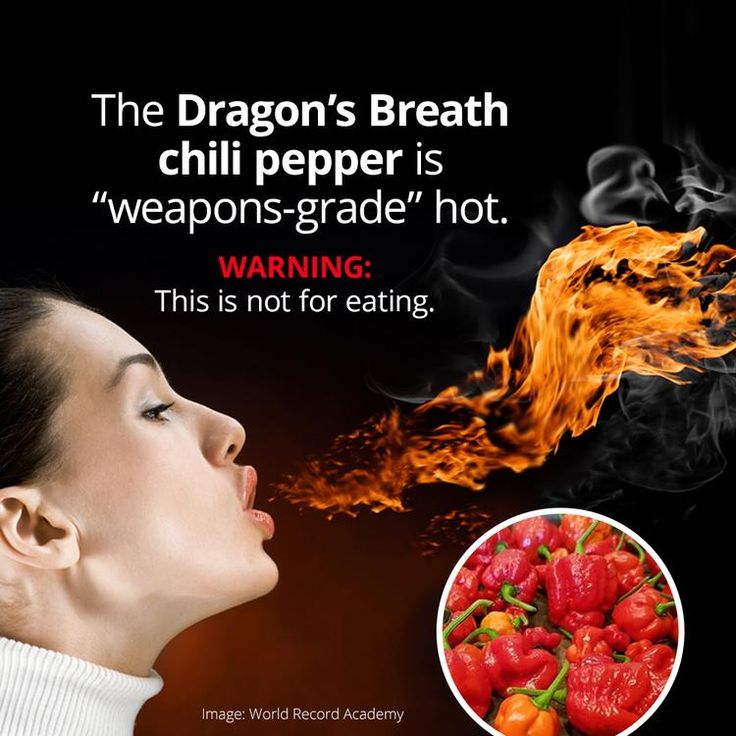 The Dragon's Breath Pepper Is The New Hottest Chili Pepper On Earth, But Don't Eat It