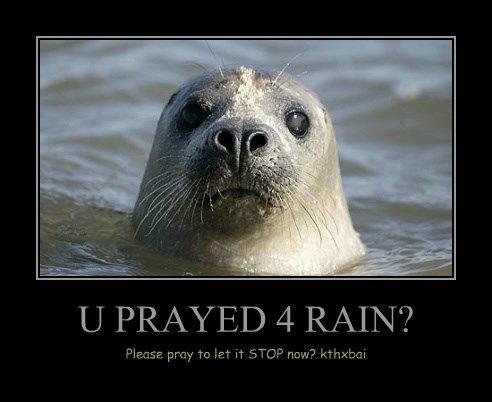 U PRAYED 4 RAIN? #humor #funny