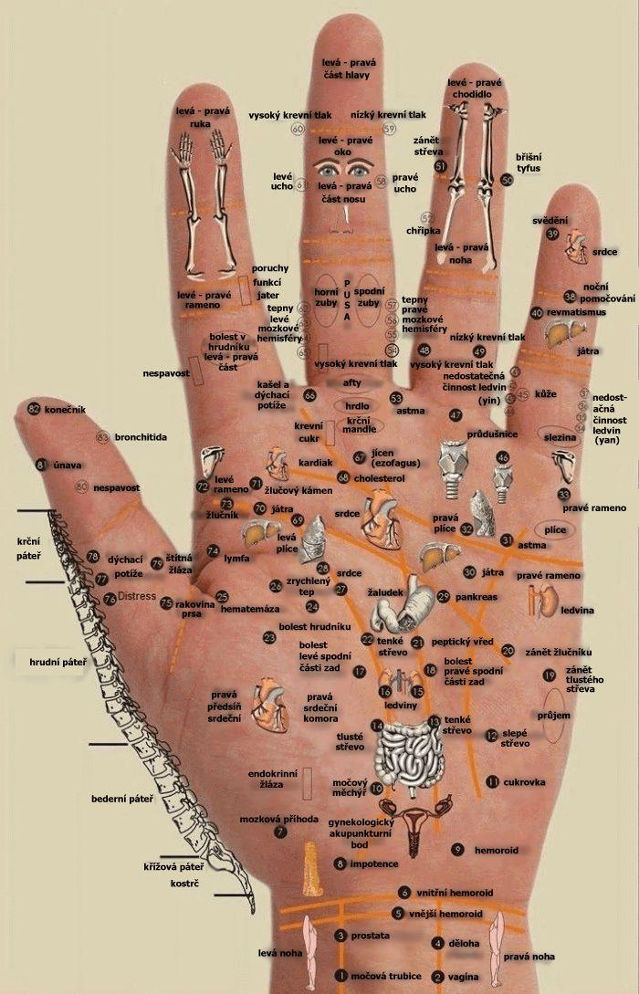 Někdy máme pocit, že máme celý svět ve svých rukou. Možná je to trochu povýšenecké, ale dá se říct, že celý váš svět se nachází ve vaší dlani. Některé tlakové body na vašich rukou pomáhají ulevovat od bolesti, kterou cítíte v jiných částech svého těla. Postupujte následovně: Stiskněte palcem ruky příslušné místo na ruce po dobu
