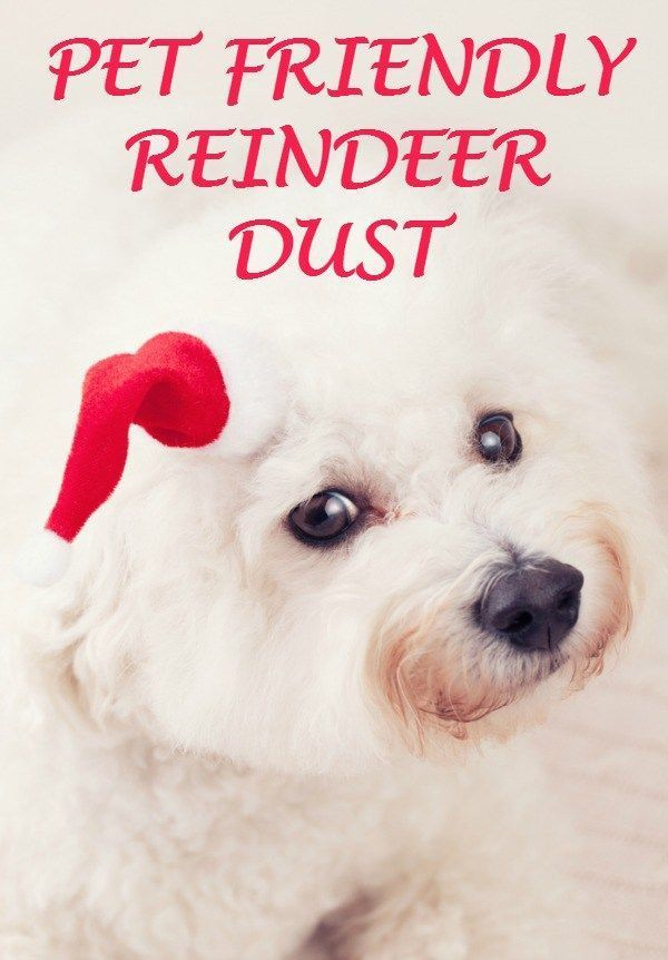 If you're making Reindeer Dust or Reindeer Food this year, please make sure it's pet and wildlife friendly.
