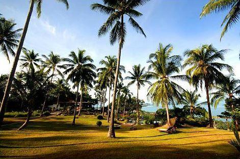 Le Jungle Club à Koh Samui : une vue époustouflante au coeur de la Jungle