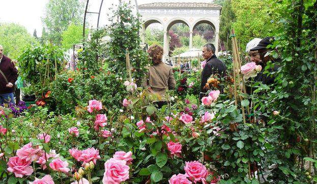 Giardino Orticultura Firenze, mostra dei fiori