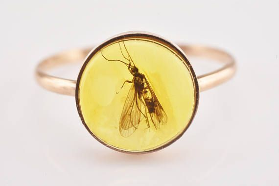 Fossil Large MOTH Insect In Baltic Amber 14k Rose Gold Ring