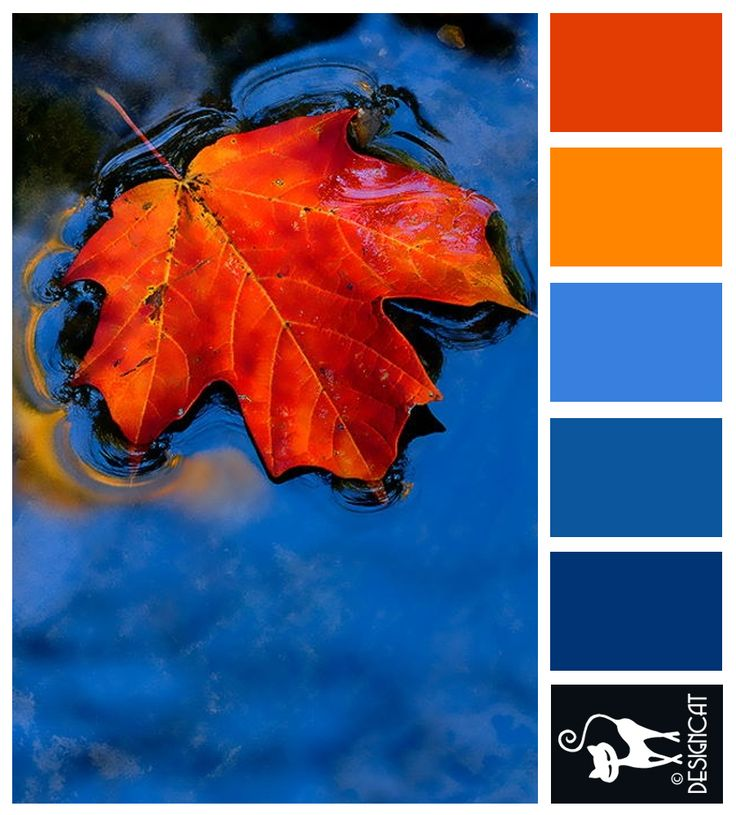 Autumn Leaf: Blue, Orange - Designcat Colour Inspiration Pallet