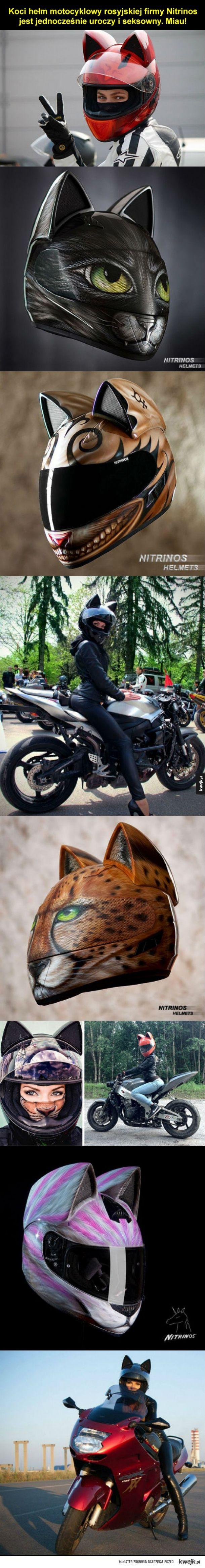 Hełm dla prawdziwego kociaka