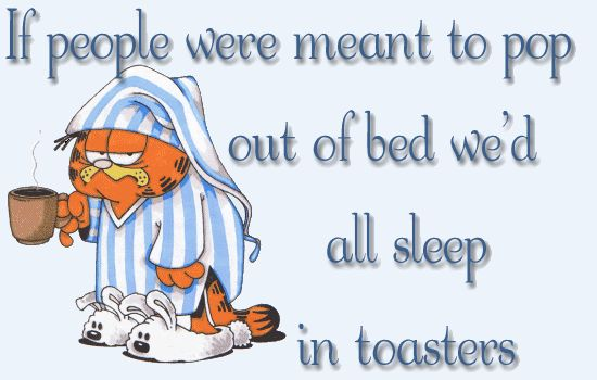 If people were meant to pop out of bed we'd all sleep in toasters. - Garfield.
