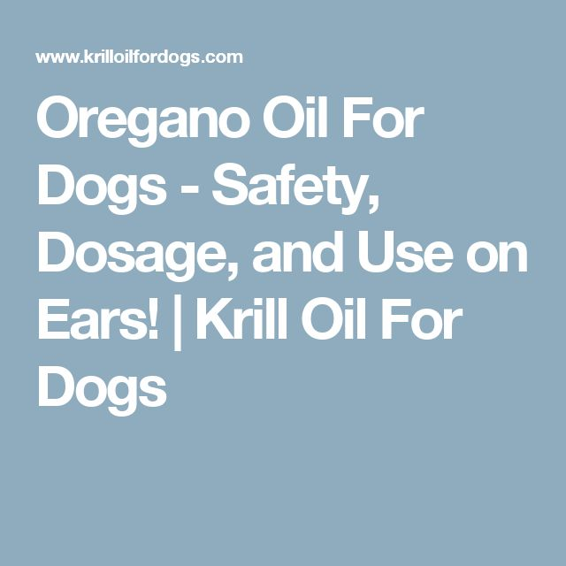 Oregano Oil For Dogs - Safety, Dosage, and Use on Ears! | Krill Oil For Dogs