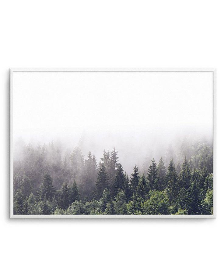 La Forêt | Landscape