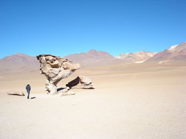stone tree, atacama desert, bolivia