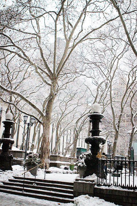 Winter in New York City...Christmas Time, Post, Bryant Parks, New York Cities, Winter Wonderland, Central Parks, Nyc, Newyork Cities, New York City