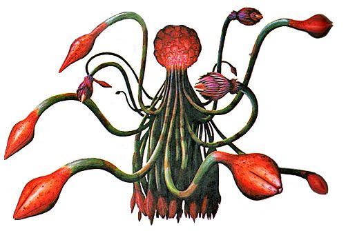 158 best resident evil monsters images on pinterest for Plante 42 resident evil