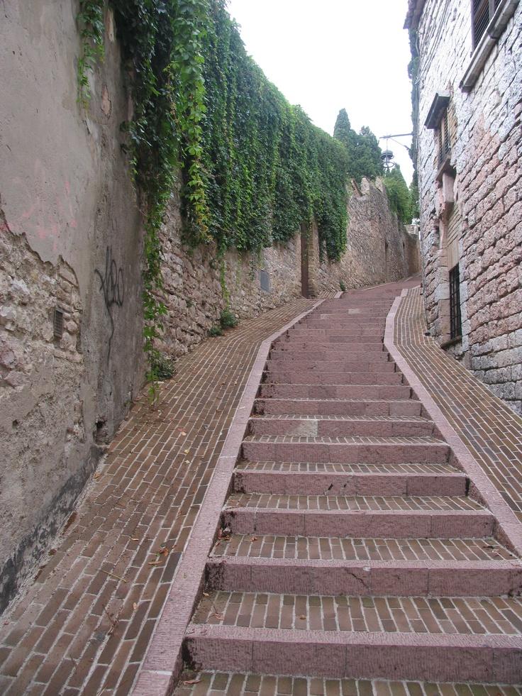 Assissi, province of Perugia , Umbria region, Italy .