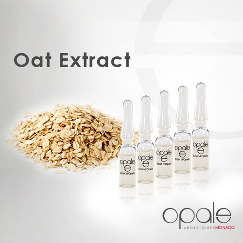 """Did you know ?  The 100% natural sugars extracted from organic oats work deep-down to """"remesh"""" the skin like an invisible film that helps firm, restructure and smooth the skin. Oat extract provides an immediate and long-lasting tensor effect on your skin and leaves it suppler and younger. Find its benefits in the vials Eclat d'Opale."""