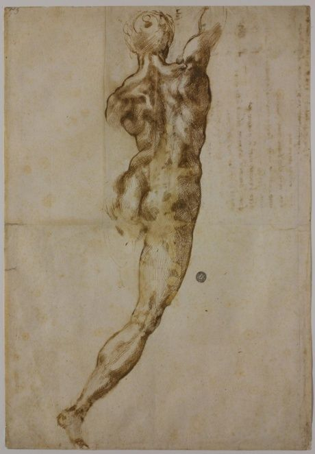 hismarmorealcalm:Michelangelo 'Nude male figure seen from the back'  Circa 1504 - 1505  Pen and ink over black chalk on paper