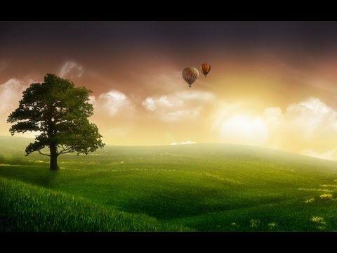 Ağaca Övgü #ağaç #orman #ormanhaftası #belirligünvehaftalar