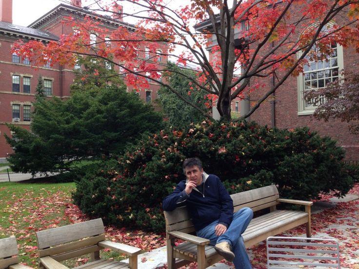 Harvard. Inspira.