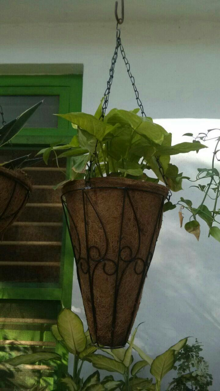 Conical hanging planters