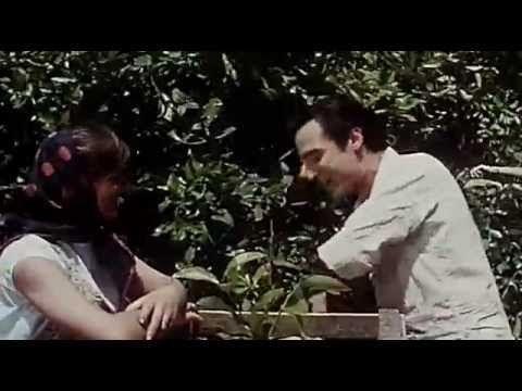 Los limoneros por Manolo Escobar