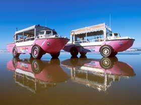 1770 LARC! Tours in Town Of Seventeen Seventy, Queensland, Australia