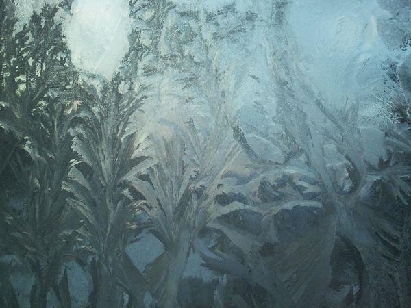 """Jégvirág: a hőszigetelő Ablakok miatt eltűnőfélben levo Ritka """"faj"""""""