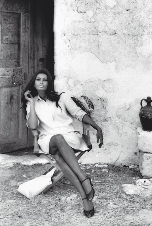 1603 best images about Sophia Loren on Pinterest