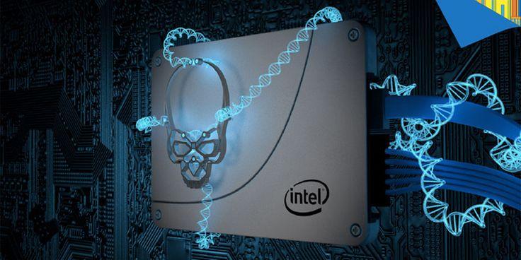 Intel 730 SERIES 2.5 Inch SSD Best Price