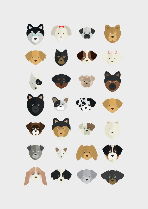 DOGS EVOLUTION - Infographic Poster by Alice Bouchardon, via Behance