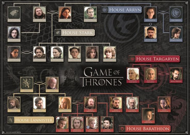 Game of Thrones Family Tree 1000 Piece Jigsaw Puzzle – All Jigsaw Puzzles UK