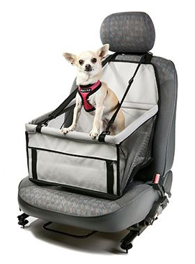 Keep your Chihuahua safe in this pawsome Car Seat Dog Cradle!