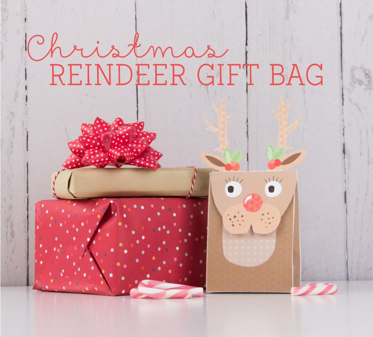 Best 25 Decorated Gift Bags Ideas On Pinterest: Top 25 Ideas About Christmas Gift Bags On Pinterest