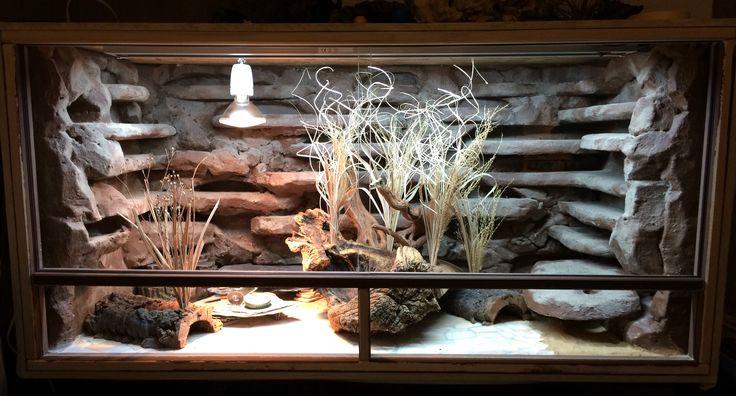 Terrarium, 120x60 by Dees-Leopardgeckos