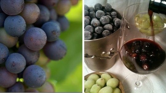 Putting ice cubes in wine is gross, especially when they melt and water everything down. Use frozen grapes instead. | 33 Kitchen Tricks To Save You Time And Hassle