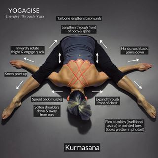 lotus pose is seen as the classic yoga posture but it is