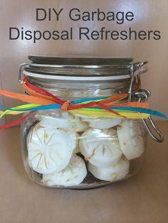 DIY Garbage Disposal Refreshers - Easy recipe with just 5 ingredients. Take 10 minutes to make!