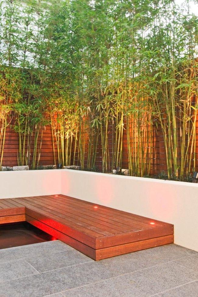Fint med: rabatt med bambu, belyst underifrån, växande mot en vägg, cementmur till rabatten, belysning längs kanten på trädäcket