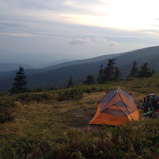 Roan Mountain State Park: 17 Best Images About Roan Mountain State Park Tn On