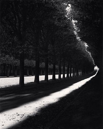 Pathway, Sceaux, France, 1998