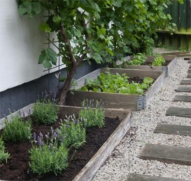 pebbles/gravel to section off the garden