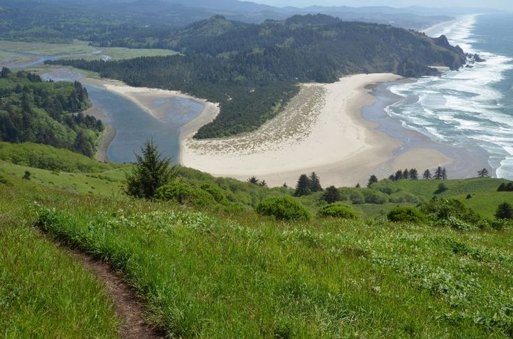The trail passes an old-growth forest of Sitka spruce, the largest wow factor of the hike until you reach the grassy open slopes atop the headland, which packs one of the largest wow factors in the entire state of Oregon.