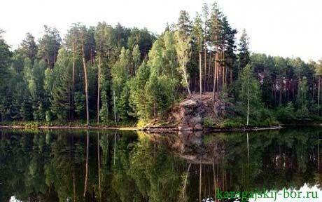 Природа вблизи санатория «Карагайский бор»