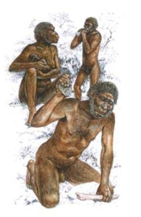 Homo-habilis, Homo-erectus, Neanderthal - Ancient Man and His First Civilizations