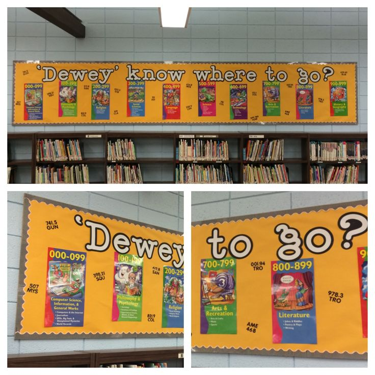 Library bulletin board: Dewey Decimal System. I used call numbers from our library on the board for kids to look up.