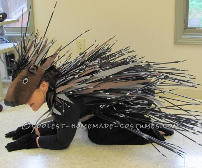 Cool Homemade Porcupine Costume... Coolest Homemade Costumes
