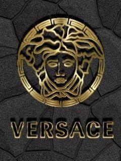 2711578.jpg 240×320 пикс Logo Versace Pinterest