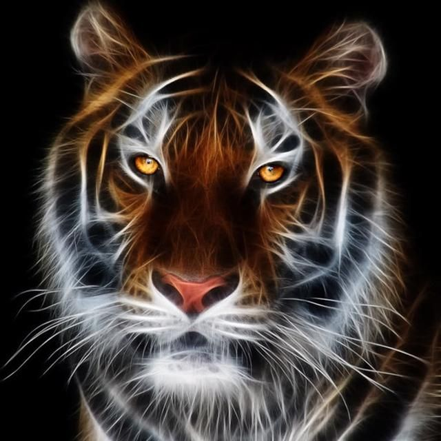 King Of The Forest Tiger Diamond Painting Cross Stitch http://pupskii.com/products/king-of-the-forest-tiger-diamond-painting-cross-stitch?utm_campaign=crowdfire&utm_content=crowdfire&utm_medium=social&utm_source=pinterest