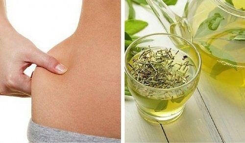 Grüner Tee – Mischen, trinken, abnehmen